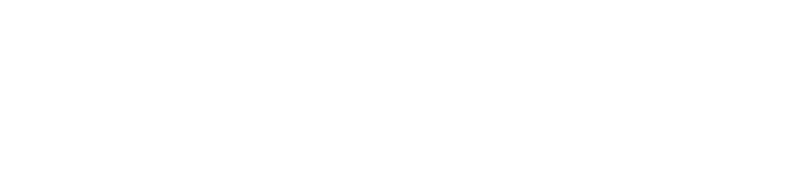 Loopascoop logo